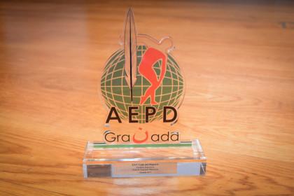 Uno de los trofeos estregados en la XXV Gala del Deporte de Granada