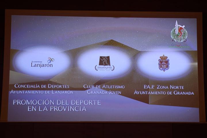 Premio a la Promoción Deportiva